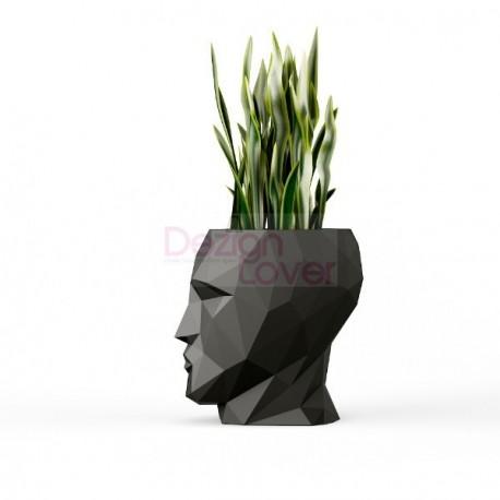 Adan Flower Pot
