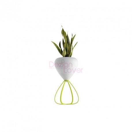 SPAGHETTI Flower Pot