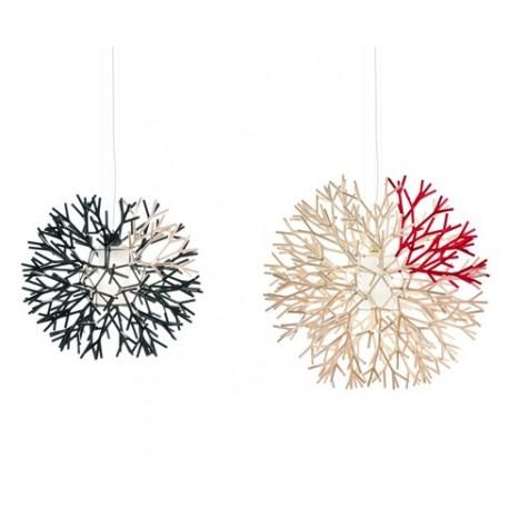 Suspension design Coral