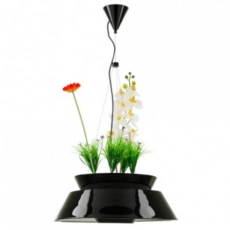 Eden LED pendant lamp