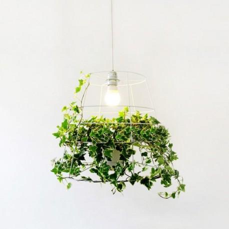 suspension design cage plante par foscarini design par. Black Bedroom Furniture Sets. Home Design Ideas